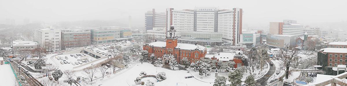 서울대병원 겨울전경