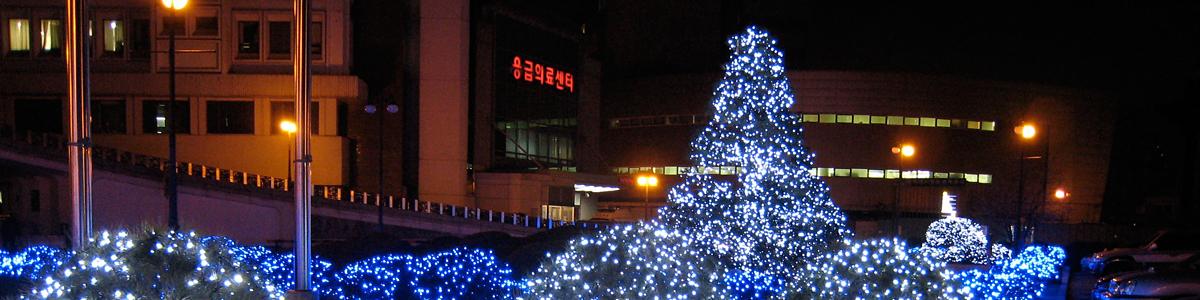서울대 야경(응급실)